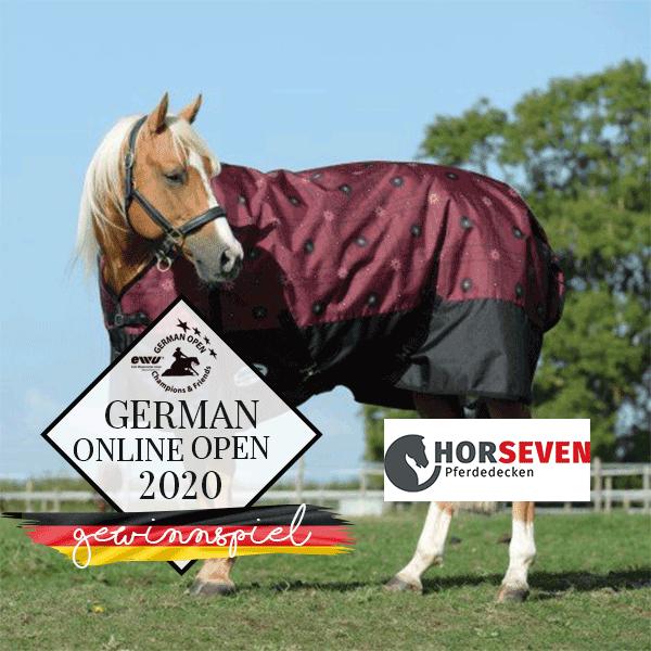 600_600GEWINNSPIEL-HORSEVEN