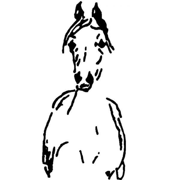 Brenda Esfeld – White Horse Ranch