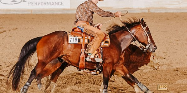Qualifikationstermine GO Working Cowhorse 2021